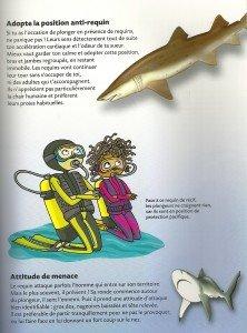 Requin (6)